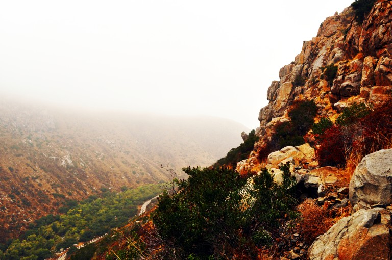 Mission Trails Fog